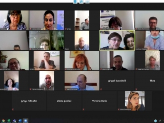 Steering  Committee (Online) Meeting #1
